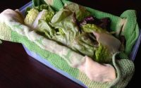 lettuce leave in container