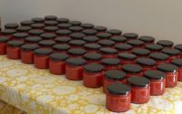 bottled tomato puree